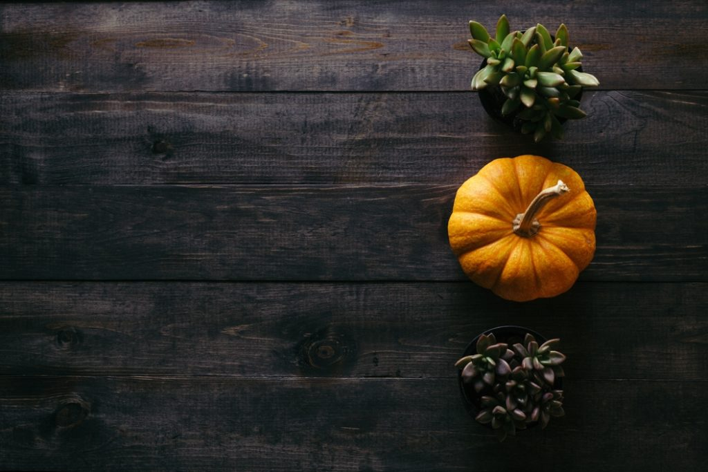 10 reasons missionaries are grateful this Thanksgiving.