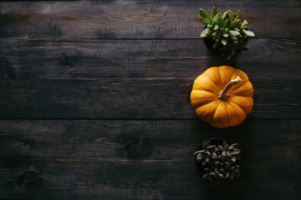 10 Reasons Missionaries are Grateful this Thanksgiving